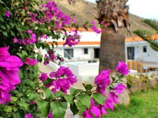 Awesome Villa in Los Gigantes with Palm Garden Overlooking Atlantic Ocean - Los Gigantes vacation rentals