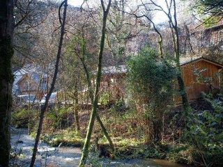 RIVERSIDE LODGE log cabin, woodland and riverside location, near Slapton, Ref - Slapton vacation rentals
