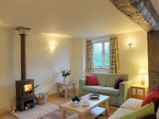 APPLE COTTAGE, Eco friendly, modern country cottage with beams and character - Yeoford vacation rentals