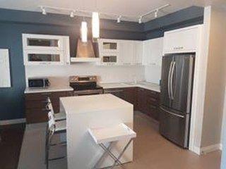 Nice Condo with Central Heating and Washing Machine - Sudbury vacation rentals