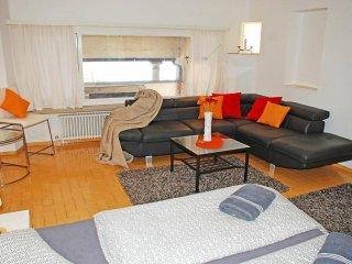 Bright Ronco sopra Ascona Studio rental with Internet Access - Ronco sopra Ascona vacation rentals