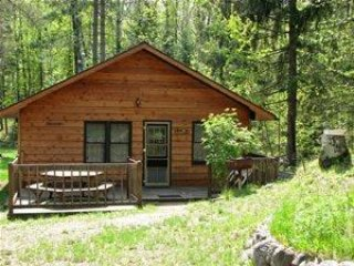 Old Stoney`s Resort - Bass Cabin - Arbor Vitae vacation rentals