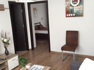 Ambient (2 rooms) - Piatra Neamt, Romania - Piatra Neamt vacation rentals