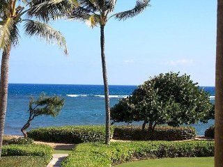 Waipouli H205 - Oceanview Boutique Condo with Modern-Day Art - Kapaa vacation rentals