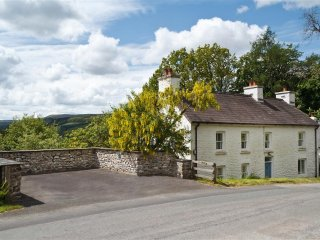 Bright 4 bedroom Llanwrtyd Wells Cottage with Television - Llanwrtyd Wells vacation rentals