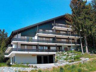 3 bedroom Apartment with Internet Access in Randogne - Randogne vacation rentals