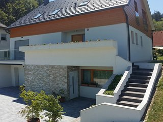 Luxury, large family apartment with full size kitchen, shower, and IR sauna - Medvode vacation rentals