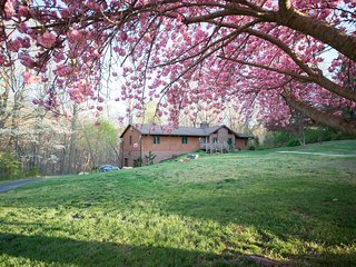 Contemporary home in scenic Brandywine Valley - Chadds Ford vacation rentals