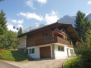 Comfortable House with Internet Access and Television - Kandersteg vacation rentals