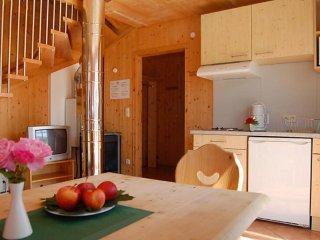 1 bedroom Condo with Internet Access in Sankt Georgen ob Murau - Sankt Georgen ob Murau vacation rentals