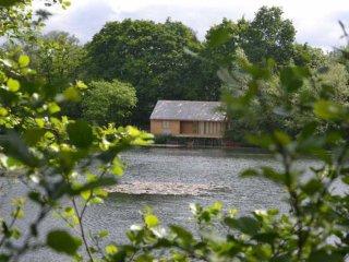 Wonderful 3 bedroom House in Earls Colne - Earls Colne vacation rentals