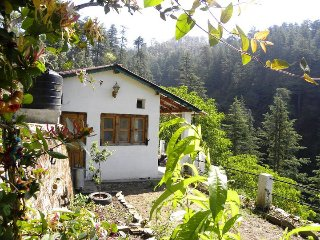Vacation rentals in Uttarakhand